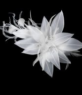 Lovely Bridal Floral Feather Headpiece