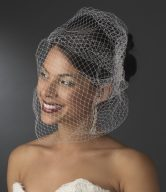 Bridal Bird Cage Veils