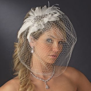 Headpiece and veil